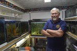 Jack VanderAa, president of the Sarnia Aquarium Society, with some of the 29 tanks in his Sarnia home. Glenn Ogilvie, The Journal