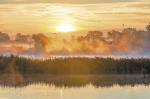 """Christine Roenspiess captured this image of the Wawanosh Wetlands at dawn during a photo shoot with friends last Oct. 10. """"We went armed with warm clothes and hot coffee and were rewarded with spectacular sunrise photos,"""" she says."""
