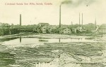 The Cleveland-Sarnia Saw Mills on Sarnia Bay opened in October 1901, cutting logs shipped from the Georgian Bay and Nipissing regions by tug boats. The mill continued to produce mainly heavy construction grade lumber until the late 1920s, when the Great Depression forced the mill to shut down. Photo courtesy, Sarnia Centennial Committee