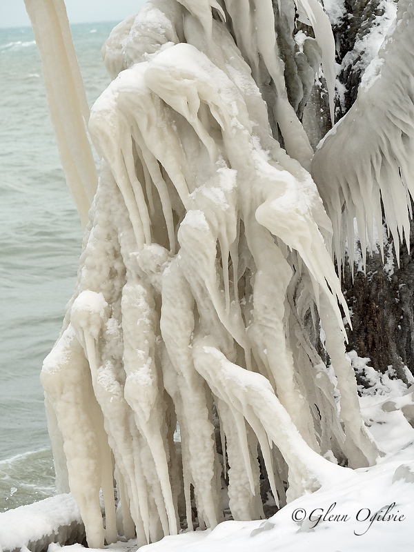 A winged figure conjured up from lake spray adorns this ice-covered tree. Glenn Ogilvie