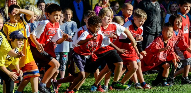 And they're off! Students from 19 Lambton-Kent elementary schools took part in a spirited Sarnia Cross-Country meet on Oct. 19 in Canatara Park. A total of 705 runners crossed the finish line.  Glenn Ogilvie
