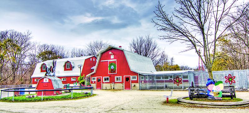 The Children's Animal Farm in Canatara Park Glenn Ogilvie file photo