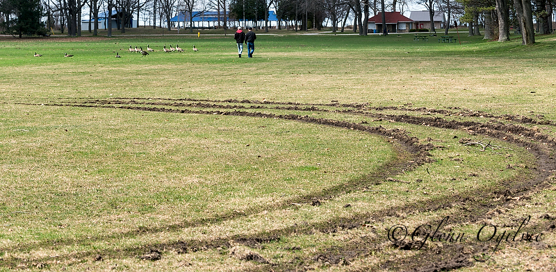 Visitors Jacob Hart and Brandon Bechard cross the centre field at Canatara Park, one of two city parks that suffered widespread damage from vehicle tracks recently. Glenn Ogilvie